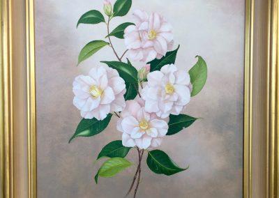 Margaret Rymill (1913-2004) 'Magnoliaeflora' 1987 Oil on board 49x39cm